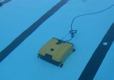 W200Xl_Dolphin_Wave_dentro_piscina